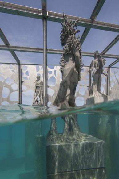 coralarium-3