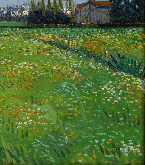 Vincent Van Gogh, Paysage sous un ciel mouvemente, 1889-details-08